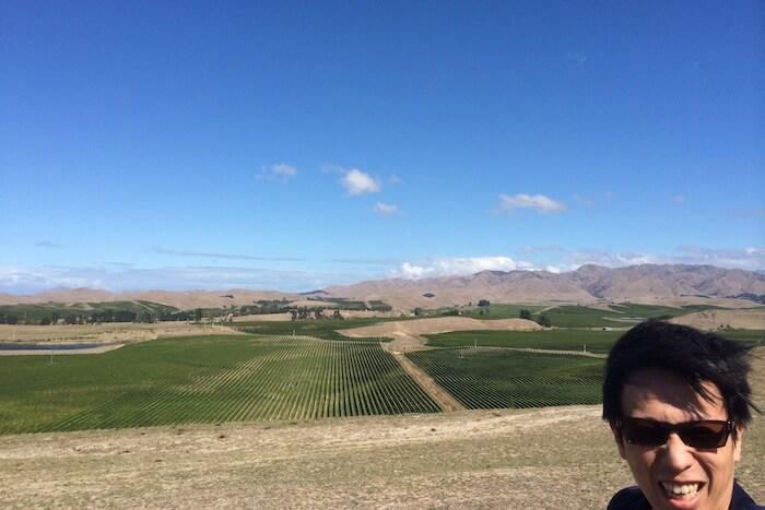 ニュージーランドのワイン畑と俺