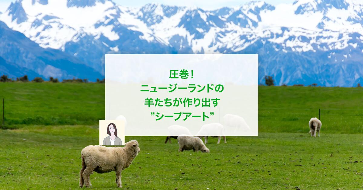 """圧巻!ニュージーランドの羊たちが作り出す""""シープアート"""""""